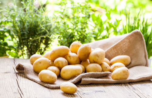 Potato Extract Effective In Controlling Weight Gain, Study Says