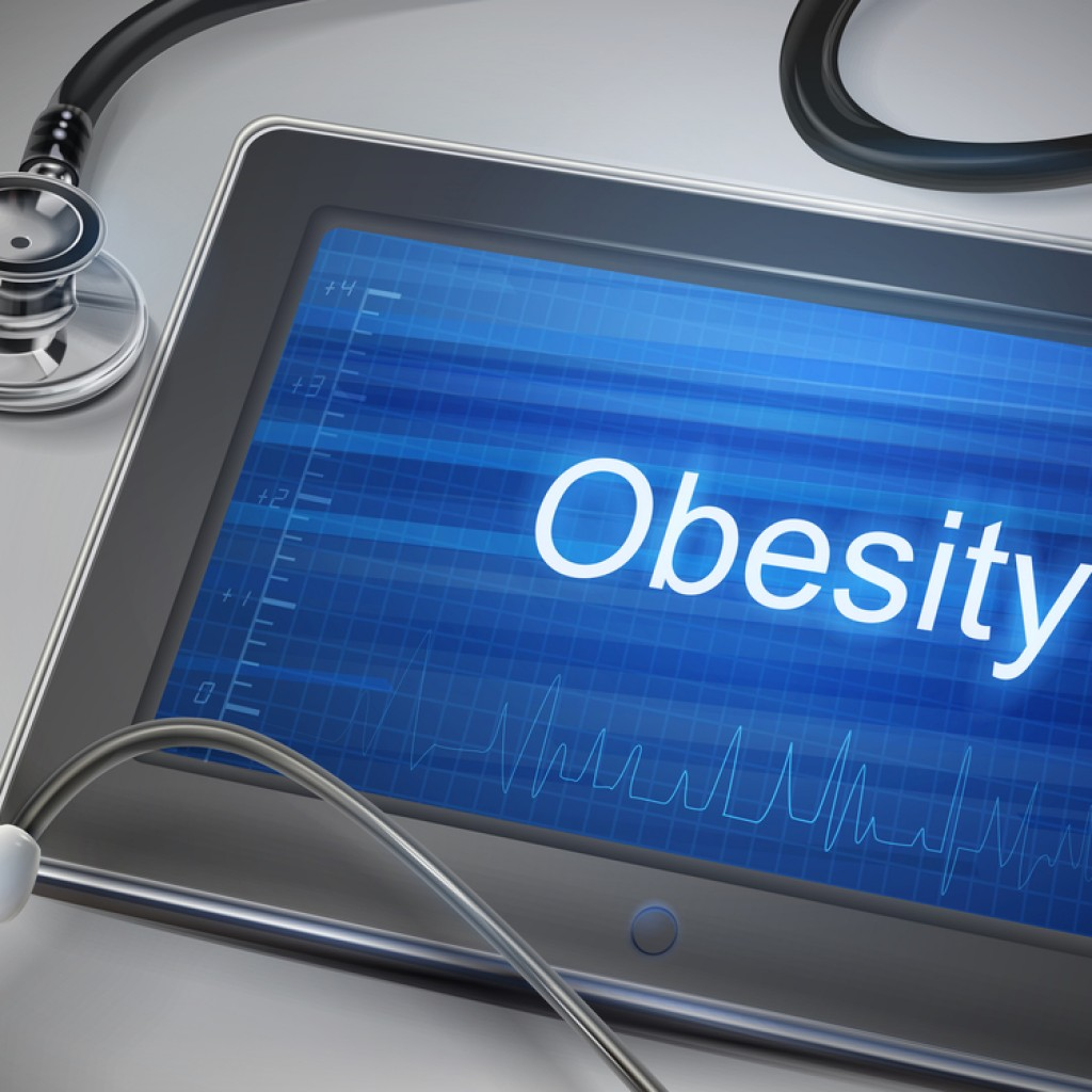 obesity and technology Health systems are typically made up of a variety of healthcare providers,  insurance plans, delivery systems, and information technologies.