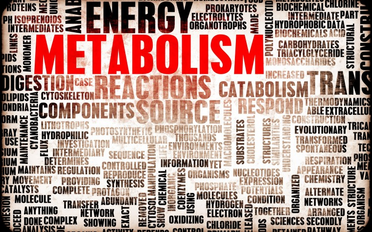 Slowed metabolism and weight loss